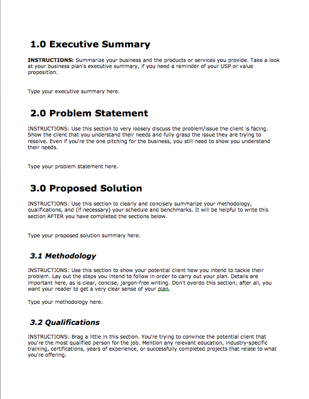 Business Proposal Templates Examples Sample Plan For Small Loan