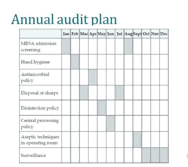 Audit Plan Template in free download